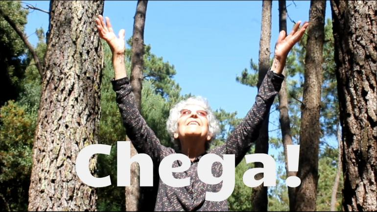 Vitória Neves diz CHEGA